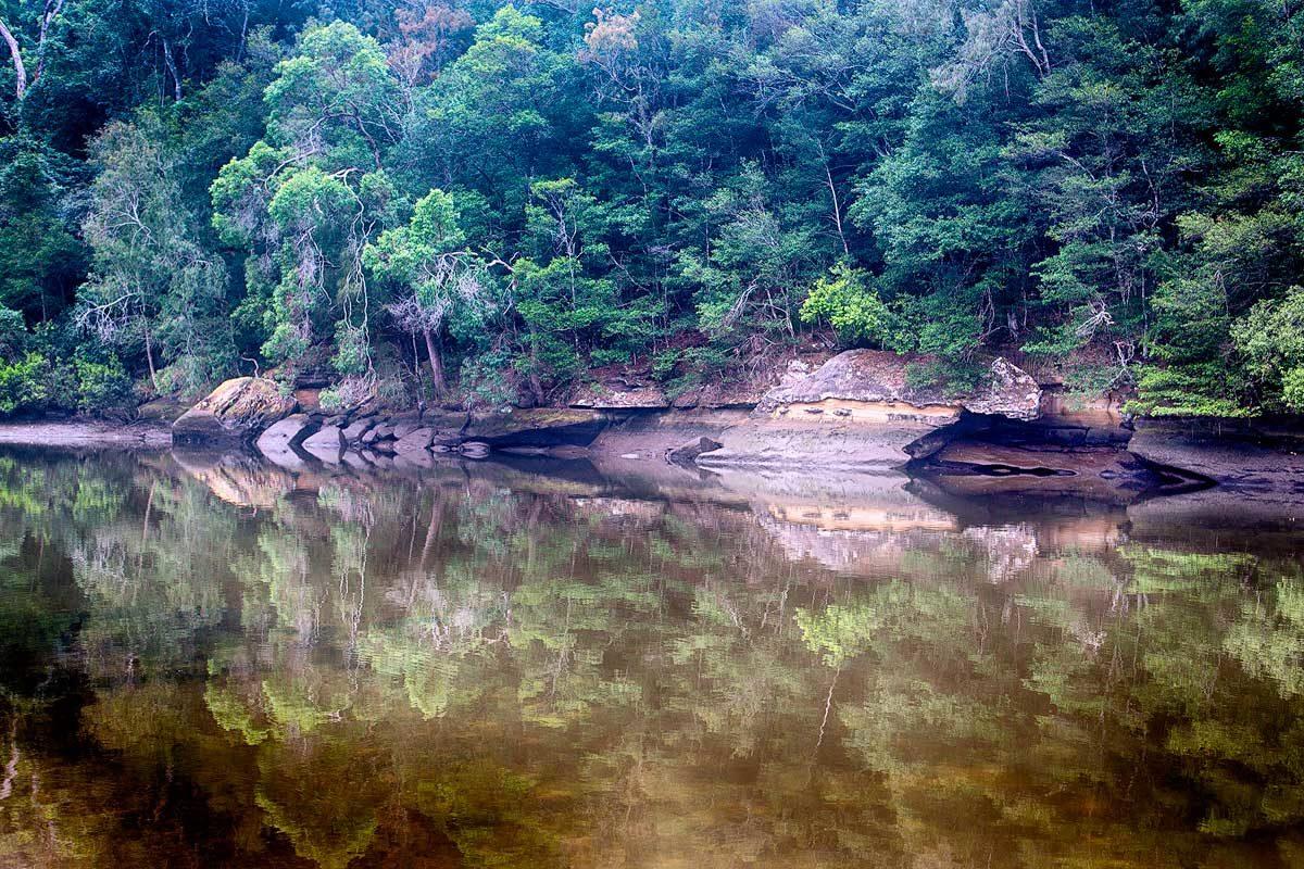 Crosslands Reserve, Berowra Valley National Park
